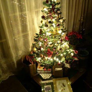 #crăciunfericit #merrychristmas🎄 #feliznavidad #familytime #homesweethome🏡