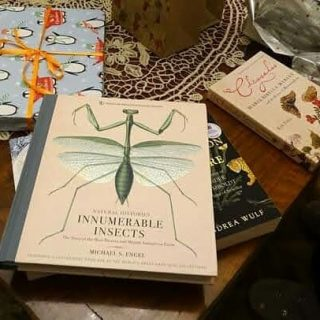 #books #morebooks #neverenoughbooks📚 #bestpresentsever🎁 #christmas #naturalhistorybooks #entomologybooks #botanybooks #historybooks #illustration #scientificillustration #histroyofillustration