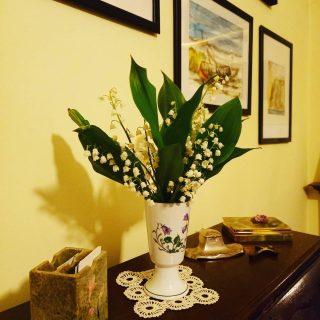 Culese pe seară de Mama din grădină. 💚 #treasures #fromthegarden #freshflowers #sceantedflowers #lăcrimioare #convallariamajalis